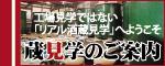 蔵見学new.jpg