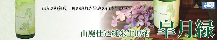 皐月緑バナー.jpg